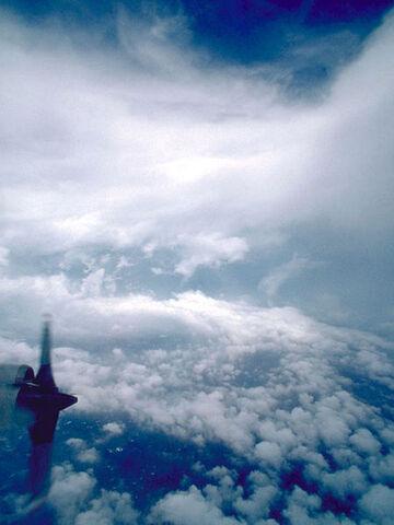 File:Eye of Hurricane Emily (1987).jpg