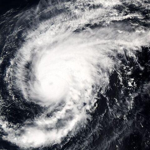 File:Typhoon Sonca 2005.jpg