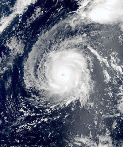 File:Typhoon Hagibis 2002 peak.jpg