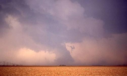 File:Not A Tornado.jpg