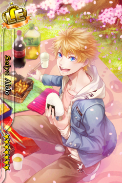 (Flower Viewing Scout) Seiya Aido LE