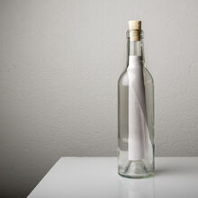bottle large HQ 774ba1f5-488d-43c8-ba16-623d1efbb542 1024x1024