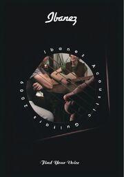2009 EU acoustics catalog front-cover
