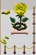 Yellow Embodiment Spirit
