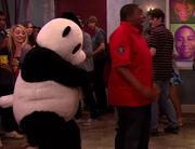 Pandamonium-panda-1