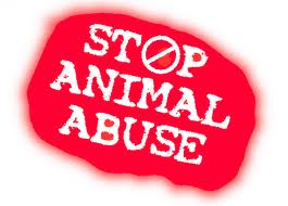 File:End Animal Abuse.jpg