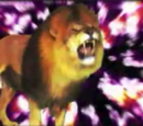 Cry Like a Lion