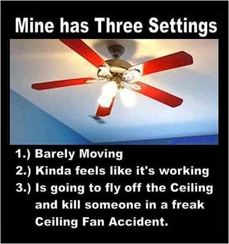 File:Ceiling fans.jpg
