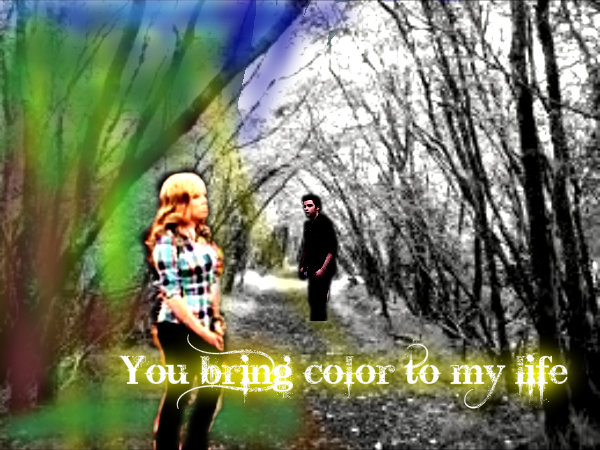 File:Seddie - You Bring Color To My Life.jpg
