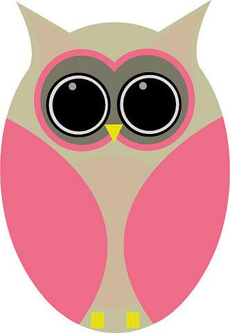 File:Funny owl.jpg