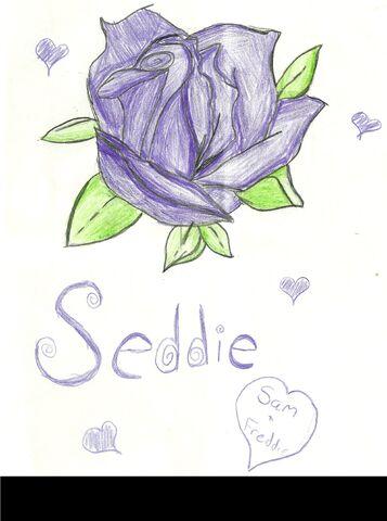 File:Seddie1012.jpg
