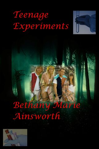 File:Bethexperiment2.jpg