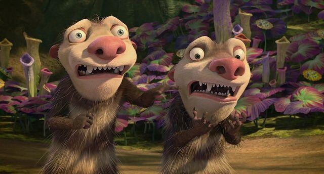 File:Nails Oppossums.jpg