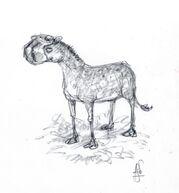 Eohippus Art