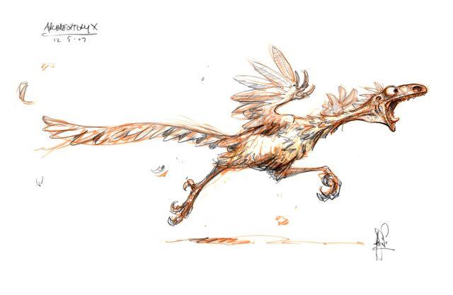 File:4archaeopteryx a.jpg