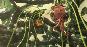 IA3 carnivorousplant-7