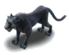 Animal-BlackPanther