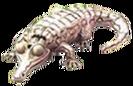 Animal-AlbinoAlligator
