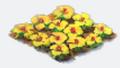 Flowersyellow
