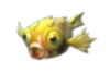 Yellowspikyfish