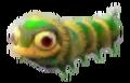 Baby grn moth