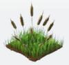 Deco reeds
