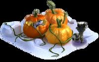 Ice pumpkin peekaboo