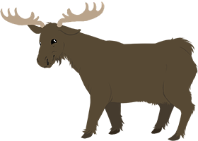 File:Cow moose.png
