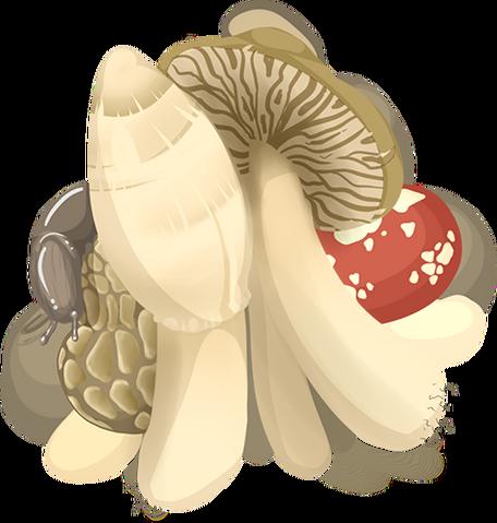File:Mushroom thumb.png