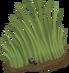Grass thumb