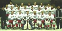 2007 IIHF World Championship Division II