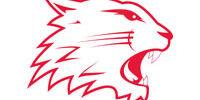 Swindon Wildcats (ENL)