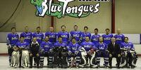 2009 AIHL season