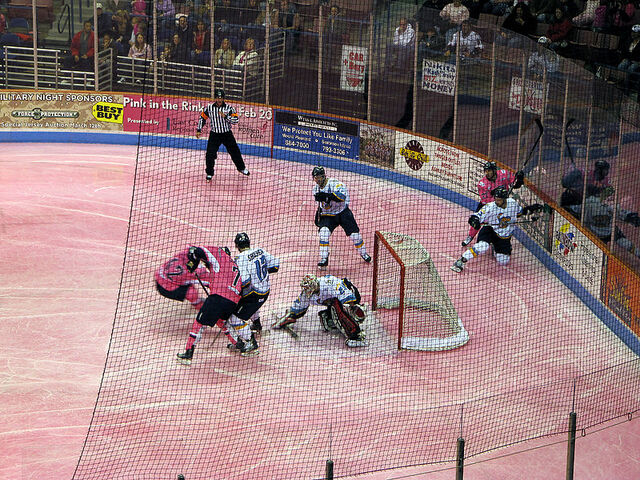 File:Pink-in-the-Rink.jpg