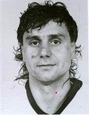 Vladimirruzicka