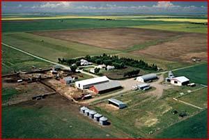File:Blackie, Alberta.jpg