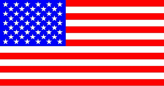 File:Flag of the United-States.jpg