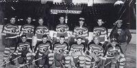 1936–37 AHL season