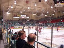 Windsor Arena interior