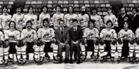 1975–76 Cincinnati Stingers season