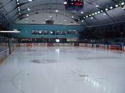St. Michael's College school arena