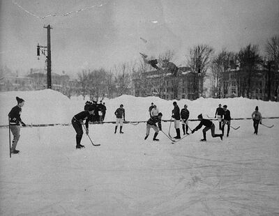 McGill hockey match