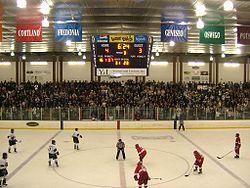 File:Ira S. Wilson Ice Arena.jpg