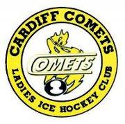 File:Cardiff Comets.jpg