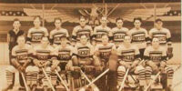 1932-33 IHL season