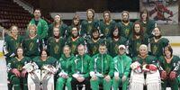 2011 Women's World Ice Hockey Championships – Division V