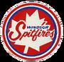 Old spitfires logo