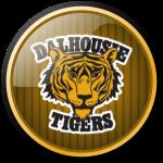 Dalhousie Tigers e7a514 231f20