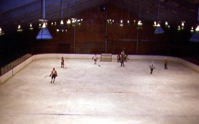 File:Buchans Arena II.jpg