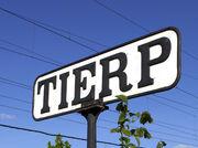 Tierp